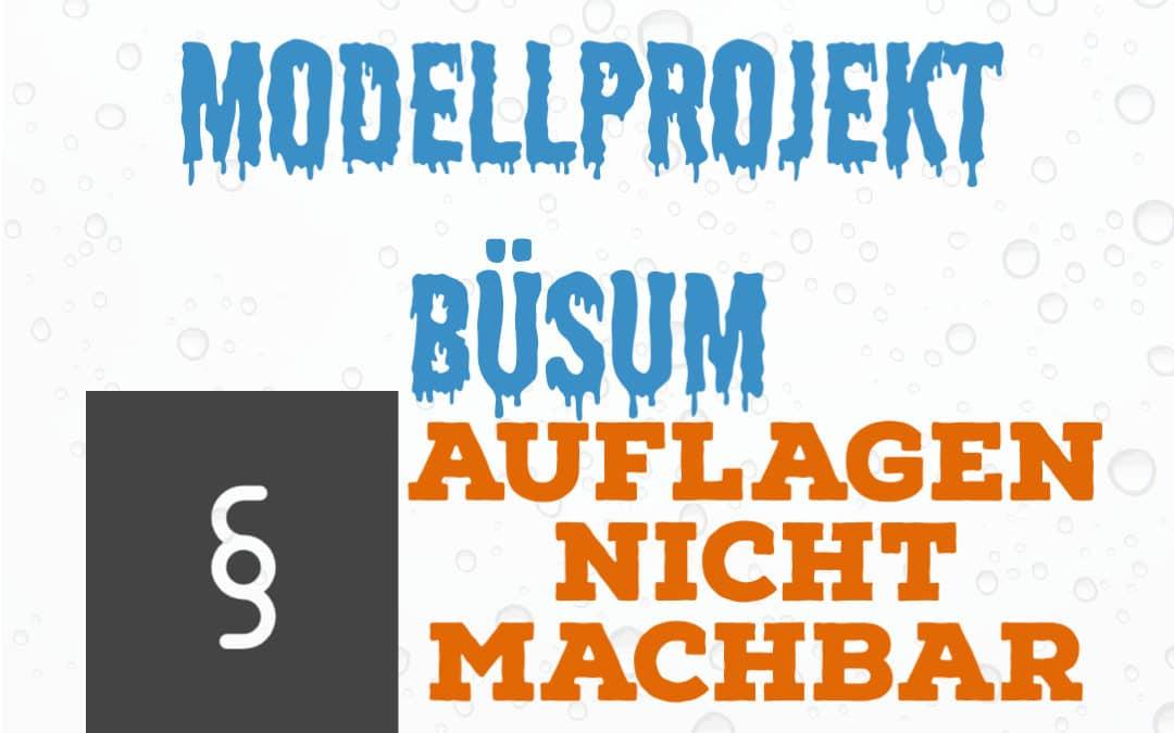Modellprojekt-Buesum-Deichlaeufer kleiner